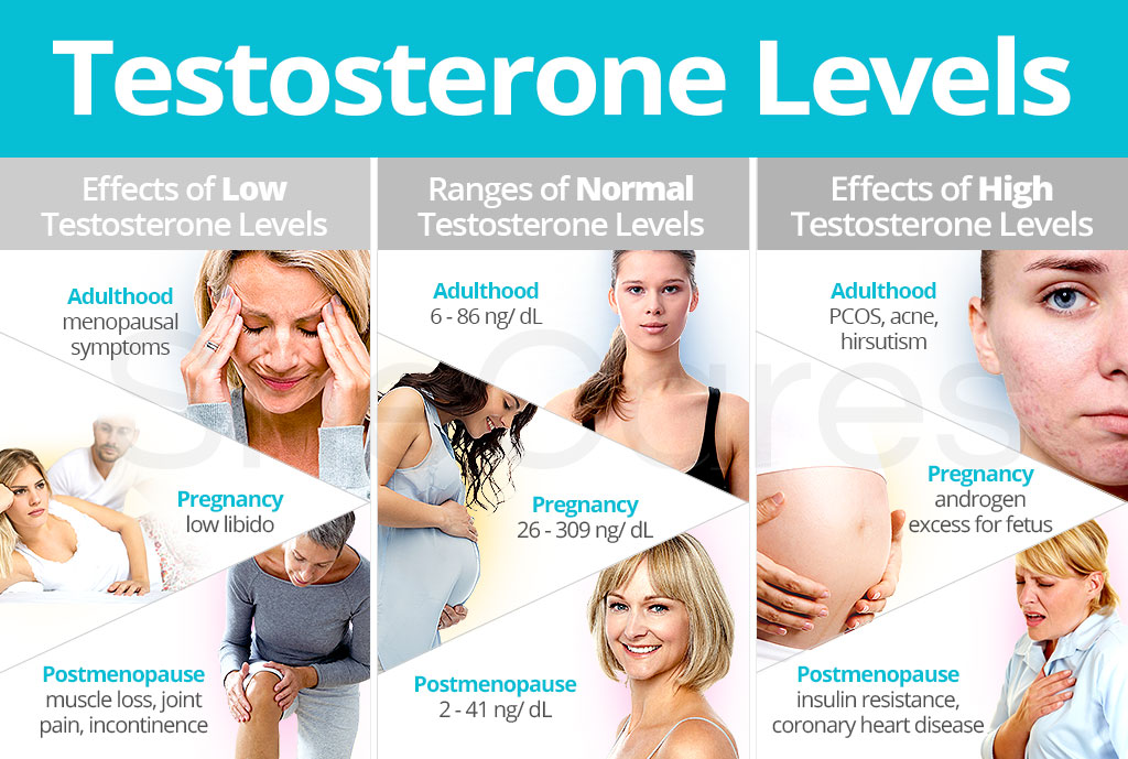 low-and-high-testosterone-in-women